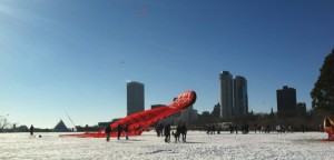The 150 foot long Octopus Kite