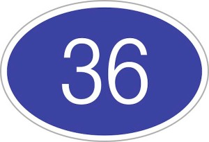numeral 36