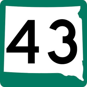 numeral 43