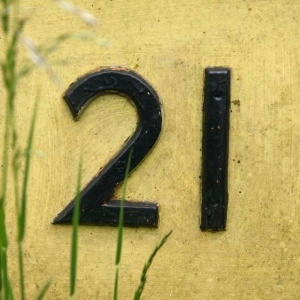 numeral 21