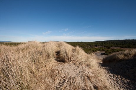 Shots from the Dunes