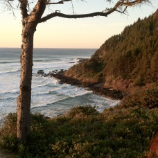 A view from Cape Perpetua