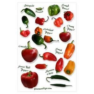 hot chili pepper poster