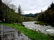 Recent rains have all the rivers running high