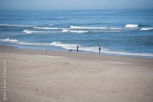 Dunes Scenery-004