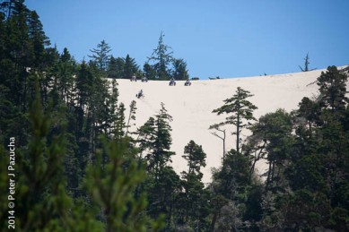 Dunes Scenery-011