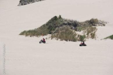 Dunes Scenery-021
