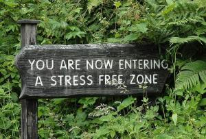 entering-stress-free-zone