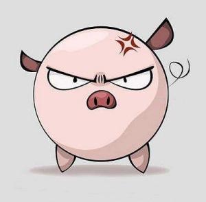 Meet the Power Pig