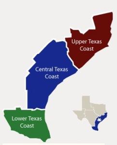 great texas coastl birding trails