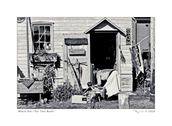 along the South Coast of Lake Superior we found this little knick-knack shop where a woman and child were rooting through boxes of books for sale.