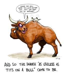 as_useless_as_tits_on_a_bull