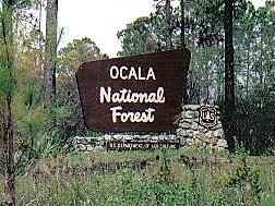 ocala_national_forest_sign