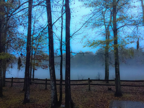Fog on the Tombigbee