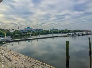 Part of the Marina
