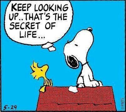 Keep-Looking-Up