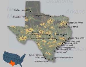 texas-wildlife-refuges