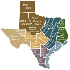 texas-subregions