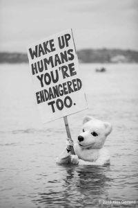 wake-up-humans