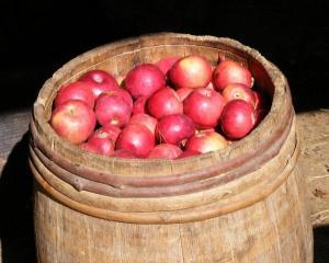 apple_barrel