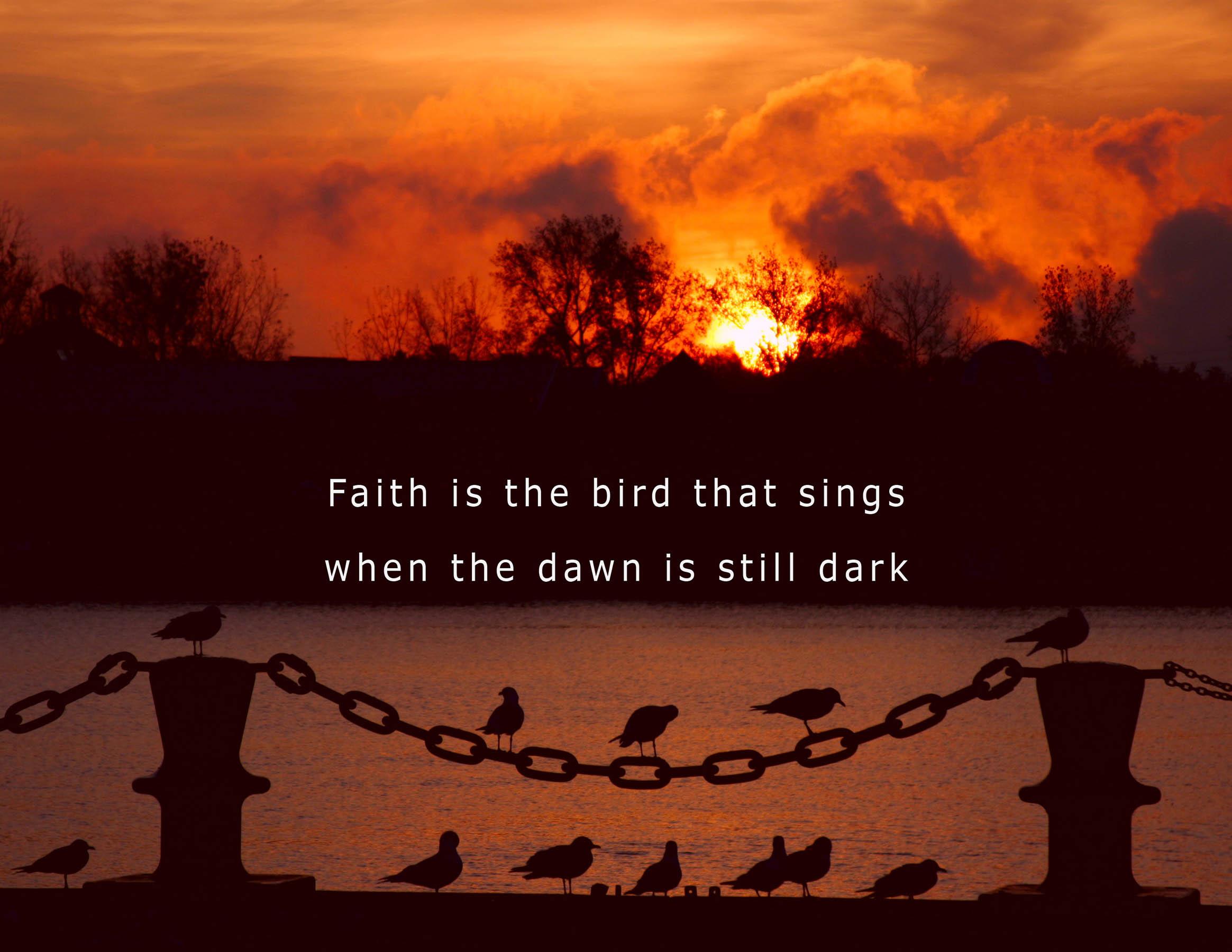 faith is the bird.jpg