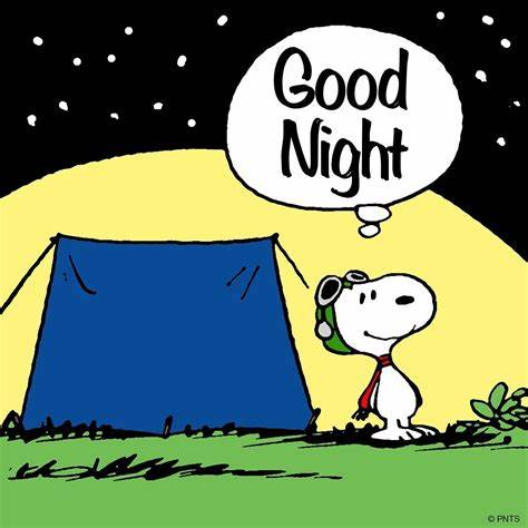 good night snoopy